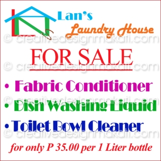 Lans_Laundry_1x1_draft