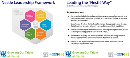Nestle-Framework1