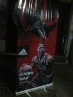 D Rose Tour Manila - Tarpaulin with Roll Up Stand